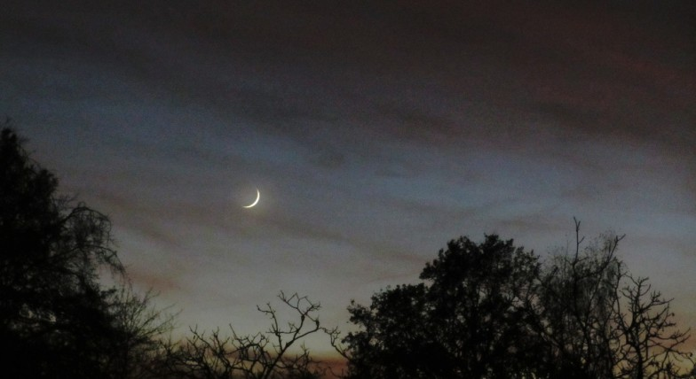 .. just after a new moon .. (click to enlarge ..)